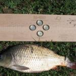 Доска IdeaFisher для чистки рыбы